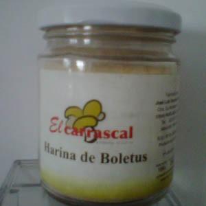 Harina de Boletus Edulis 100 grs.